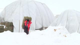 Bingöl'de besicilerin zorlu kış mesaisi