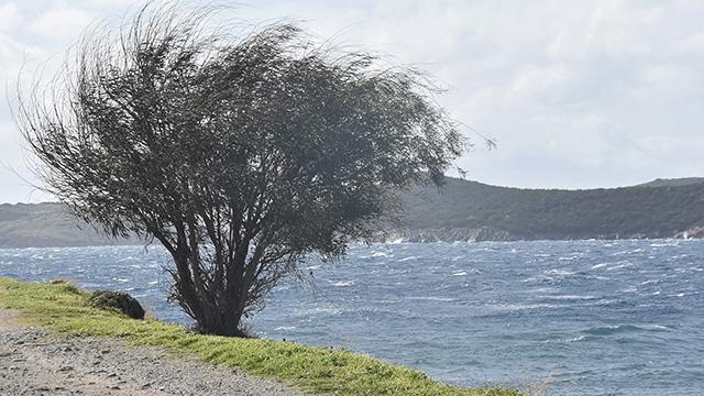 Muğlada kuvvetli fırtına etkili oluyor