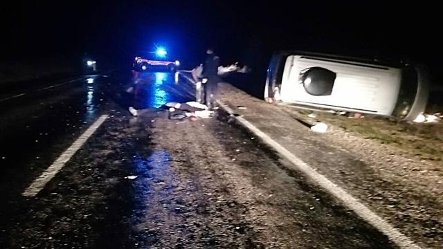 Domuza çarpan hafif ticari araç şarampole yuvalandı: 3 ölü
