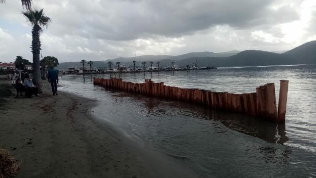 Aşırı yağışlara sahilde ağaç kazıklı önlem