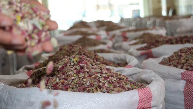Türkiyeye 2 yıl yetecek kadar fıstık stoku var