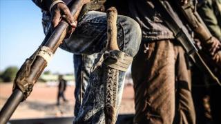 Nijerya'da ISWAP üyesi 25 kişi etkisiz hale getirildi