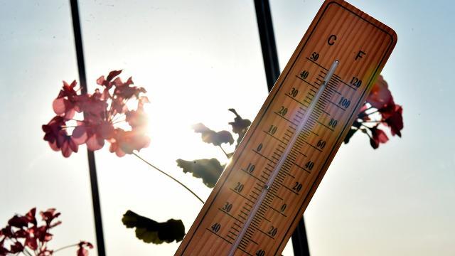 Türk Dünyası Meteoroloji Forumu yarın yapılacak