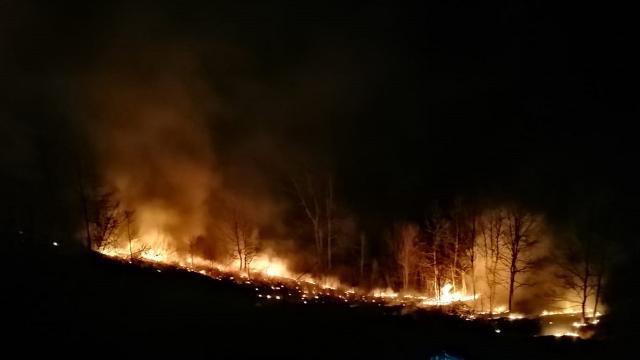 Tokatta çıkan orman yangını 7 saatte söndürüldü