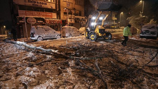 İstanbulda kar yağışı bazı bölgelerde ağaçları devirdi