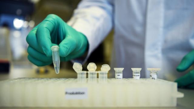 Avrupa İlaç Ajansı, CureVac aşısının değerlendirme sürecini durdurdu