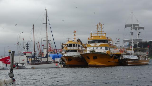 Fırtınadan kaçan gemiler Sinopa sığındı