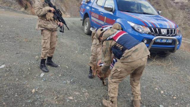 Adıyamanda yaralı bulunan dağ keçisi tedavi altına alındı