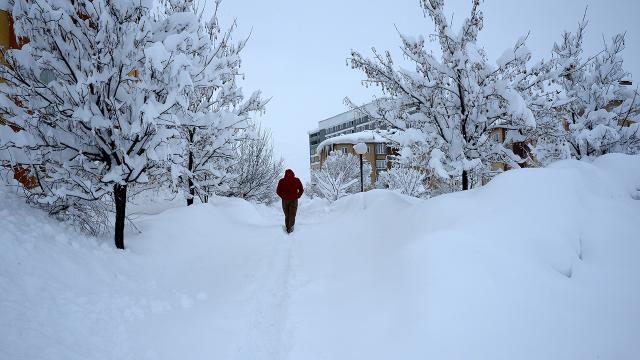 Bakan Pakdemirli uyardı: Zirai don ve yoğun kar yağışına dikkat