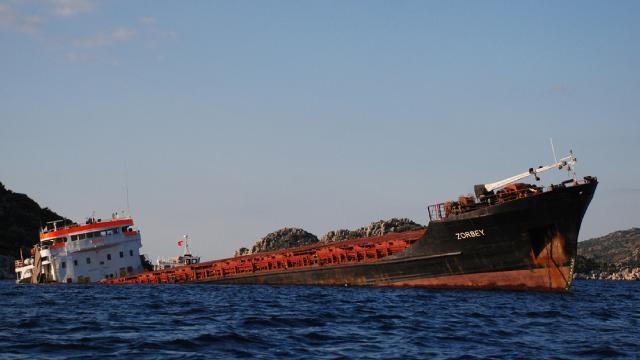 Batık geminin çıkarılmasıyla Koyda doğal yaşam yeniden başlayacak