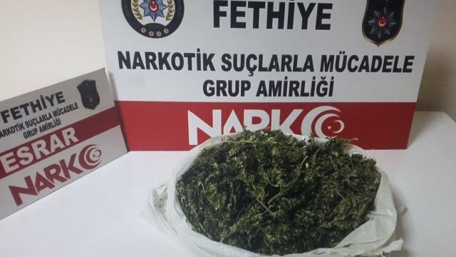 Muğlada uyuşturucu operasyonunda yakalanan şüpheli tutuklandı