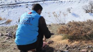 Türkiye Diyanet Vakfı gönüllüsü karlı dağlara yem bıraktı
