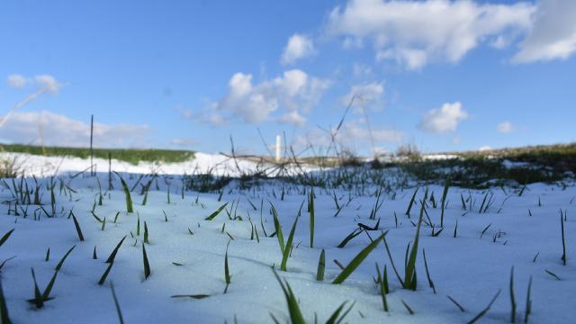 Edirnede yağan kar buğday üreticisini sevindirdi