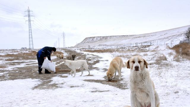 Konya Büyükşehir Belediyesi kar mesaisinde