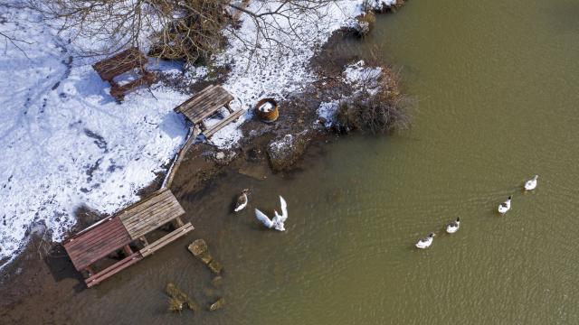 İzmir Karagöl Tabiat Parkı beyaza büründü