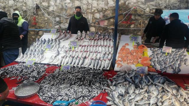 Soğuk hava balık fiyatlarını vurdu