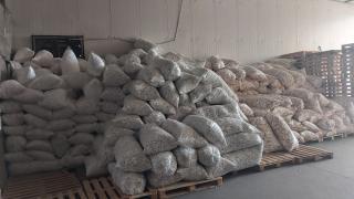 Manisa'da 258 bin kaçak makaron ele geçirildi