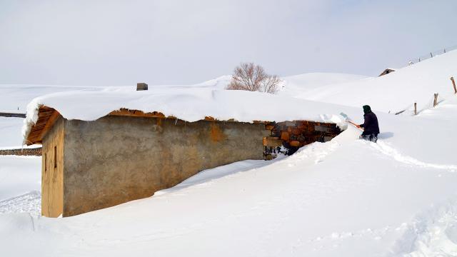 Muşta tek katlı evler kardan kayboldu