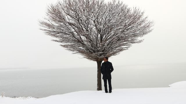 Erciş'te kar manzaraları