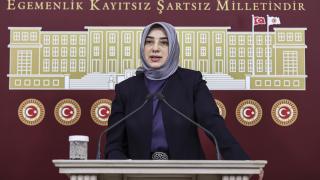 AK Parti Milletvekili Özlem Zengin'e hakarete soruşturma