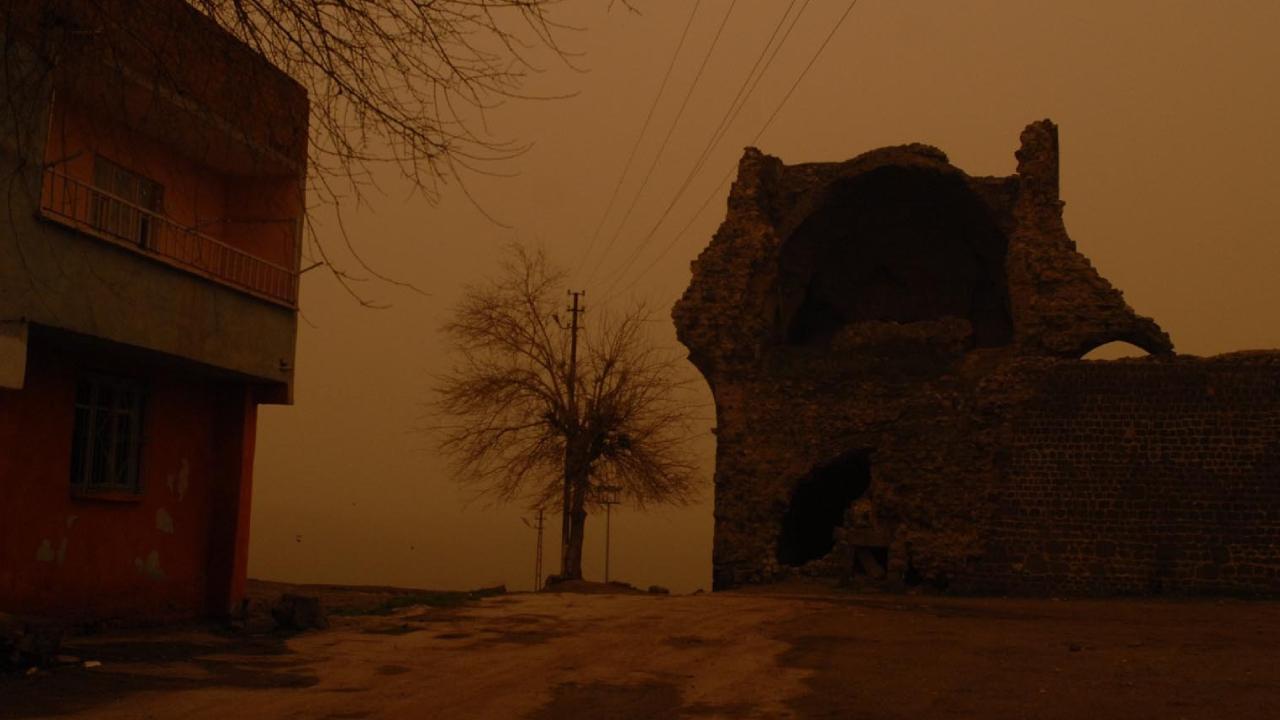 'Çöl tozları' Türkiye yolunda: Uzmanlardan virüs uyarısı
