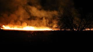 Burdur'da sazlık alanda yangın