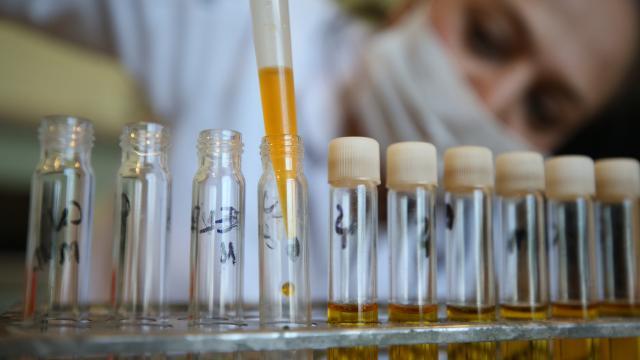 Kimya sektörü ihracatı şubatta yüzde 12,72 arttı
