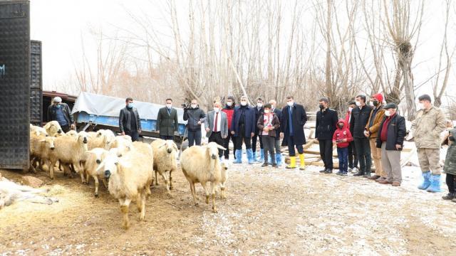 Köyümde Yaşamak için Bir Sürü Nedenim Var Projesinden Sivasta çiftçilere 22 bin hayvan desteği