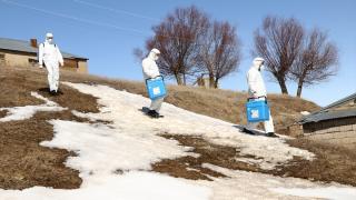 Erciş'te 2. doz aşı çalışmaları devam ediyor