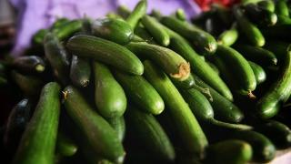 Şubat ayında en çok salatalık fiyatı arttı