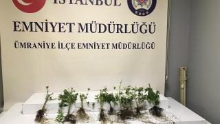 Ümraniye'de uyuşturucu imal edilen eve baskın: 1 gözaltı