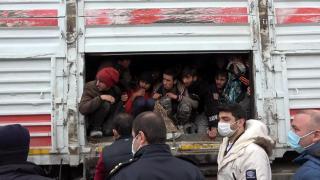 Balık istifi 114 kaçak göçmen taşınan tır'ın sürücüsü sorguda