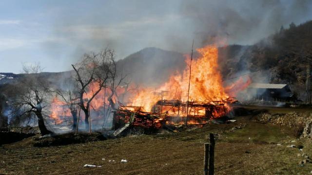 Artvin'de 4 ev, 4 ahır ve 4 samanlık yandı