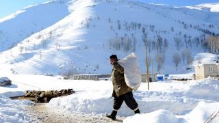 Bitlis'te besiciler zorlu kış şartlarına rağmen hayvanların bakımını ihmal etmiyor