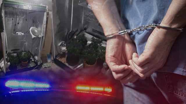 Ankesör soruşturmasında 46 gözaltı kararı