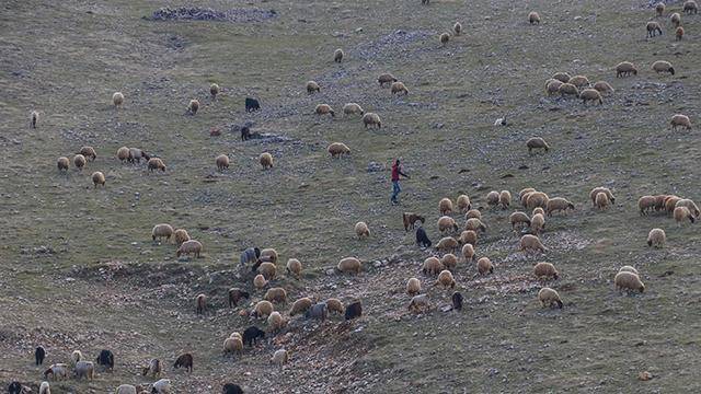 Mardinde son 20 yılın en kurak dönemi yaşanıyor