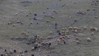 Mardin'de son 20 yılın en kurak dönemi yaşanıyor