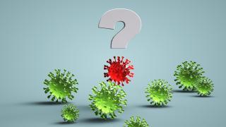 Hangi hallerde aşı olmadan önce doktora danışmalı?