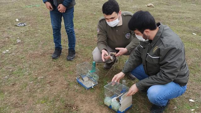 Koruma altında olan kuşları avlayan kişiye 5 bin 879 lira ceza kesildi