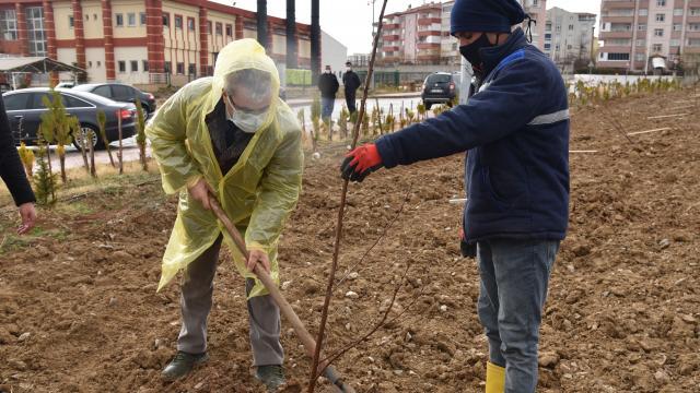 KMÜde doğaseverlerin bağışlarıyla meyve bahçesi oluşturuldu