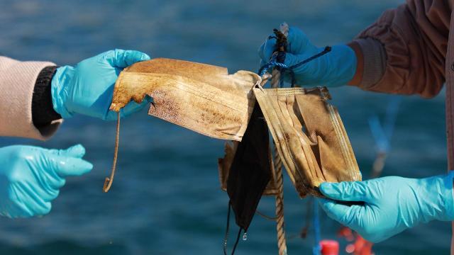 Maske ve eldivenler denizlerin yeni kirlilik kaynağı oldu