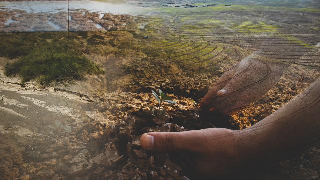 Toprağın sinsi düşmanı: Erozyon
