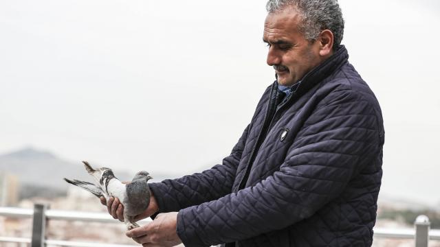 Covid-19 geçirdiği süreçte güvercinleriyle moral buldu
