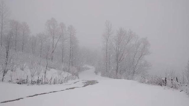 """""""Mart kar""""ı birçok kenti beyaza bürüdü"""