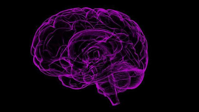 Türkiyede yaklaşık 1 milyon epilepsi hastası bulunuyor