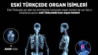 Eski Türkçede Tıp Terimleri