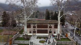 """600 yıllık çınar ağaçlarının gölgesinde """"Şeki Han Sarayı"""""""