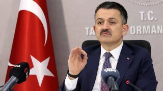Bakan Pakdemirli: Türkiye, Yeşil Kalkınma Devrimi'nde öncü rolü üstlenecek