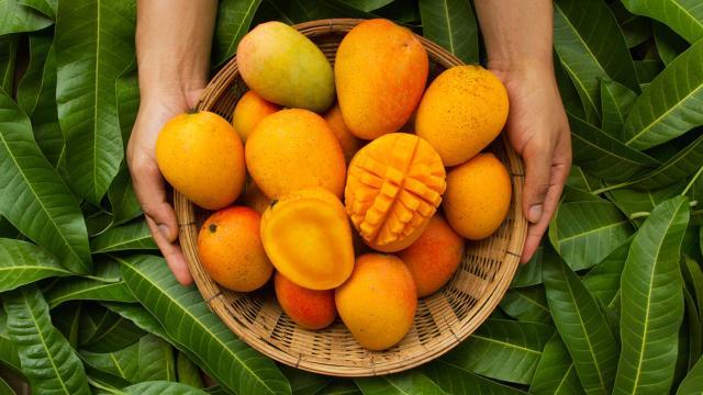 Tropikal meyve ihracatında yüzde 38 artış