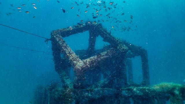 2 bin 400 yapay resif Marmara Adalarında denize bırakılacak